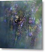 Lavender Field II Metal Print
