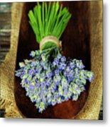 Lavender Flower  Metal Print