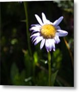 Lavender Friends Metal Print