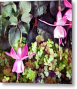 Lavender Fuchsias Just Hanging Around The Garden Metal Print