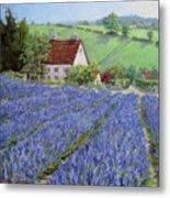 Lavender Hill Metal Print