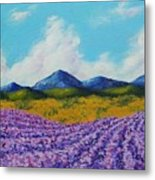 Lavender In Provence Metal Print
