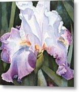 Lavender Light Metal Print