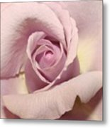 Lavender Mini Rose Metal Print