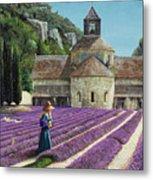 Lavender Picker - Abbaye Senanque - Provence Metal Print