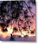 Lavender Sunset Metal Print