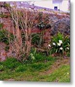 Lavender Wall In England Metal Print