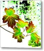 Lavish Leaves 4 Metal Print