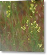 Lay In The Meadow Metal Print