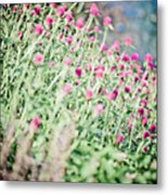 Layered Pink And Blue Metal Print