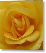 Layers Of Petals Metal Print