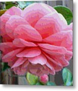 Layers Of Pink Camellia - Digital Art Metal Print