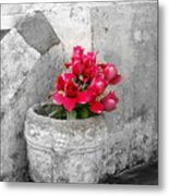 Layfayette No One Red Roses Metal Print