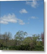 Lazy Afternoon Metal Print by Hasani Blue