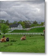 Lazy Afternoon In The Country Metal Print