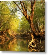 Lazy Afternoon On The Creek 2 Metal Print