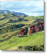 Leader Road View Metal Print