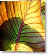Leaf 1 Metal Print
