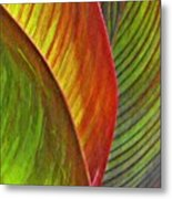 Leaf Abstract 3 Metal Print
