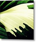 Leaf Abstract 7 Metal Print