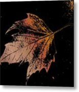Leaf On Bricks Metal Print