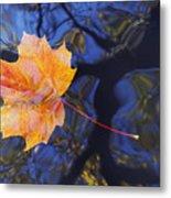 Leaf On The Water Metal Print