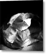 Leaf Series 02a01 Metal Print