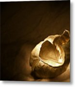 Leaf Series 1 Metal Print