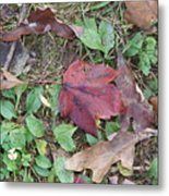Leaf Standing Out In A Crowd Metal Print