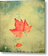 Leaf Upon The Water Metal Print by Bill Cannon