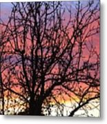 Leafless Silhouette Metal Print