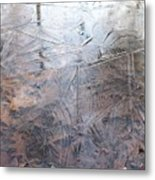 Leafs And Ice Metal Print
