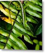 Leafy Lizard Metal Print