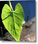 Leafy Veins Metal Print