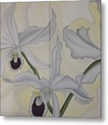 Lealia Purpurata   Orchide Metal Print