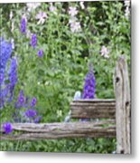 Leaning On The Fence Metal Print