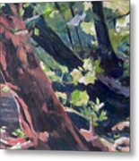 Leaning Tree At Eno River Metal Print