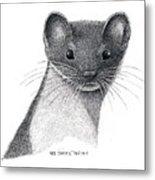 Least Weasel Metal Print