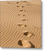 Leave Only Footprints Metal Print