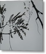 Leaves Against A Grey Sky Metal Print