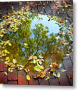 Leaves And A Puddle Metal Print