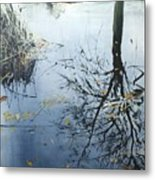 Leaves And Reeds On Tree Reflection Metal Print