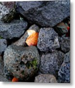 Leaves And Stones Metal Print