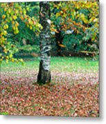 Leaves Blowing Off The Autumn Tree Metal Print