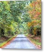 Leaves Changing In The Fall Near Collierville,tn Metal Print