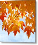 Leaves Nature Art Orange Autumn Tree Leaves Metal Print