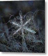 Leaves Of Ice, Panoramic Version Metal Print