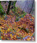 Leaves Of The Forest Metal Print