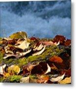 Leaves On Rock By River Metal Print
