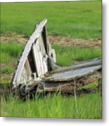 Left To Rot Metal Print